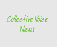 Collective Voice announces new Chair and Vice Chair